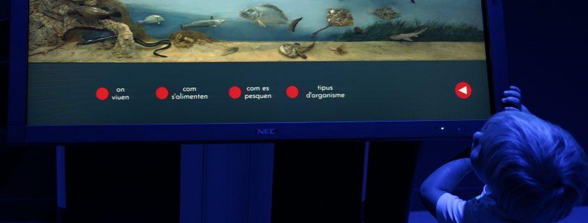 observatori blau tarragona subhasta