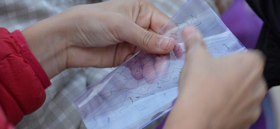 Activitats amb nens - Mir i Manent - Aleixar