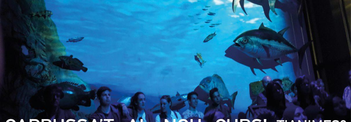 Activitats amb nens - Museu del Port - Tarragona