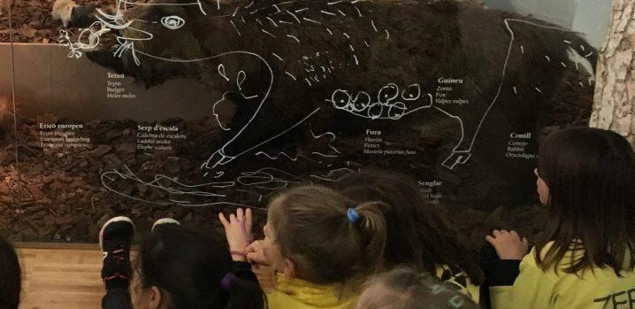 Activitat escola - Museu de la vida rural - terra sostenibilitat