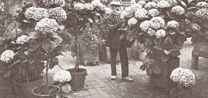 modernisme_flors